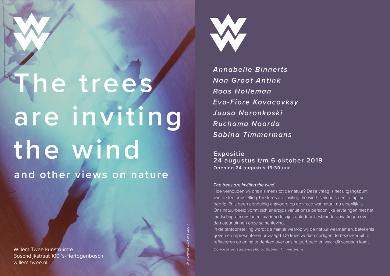 the trees are inviting the wind flyer